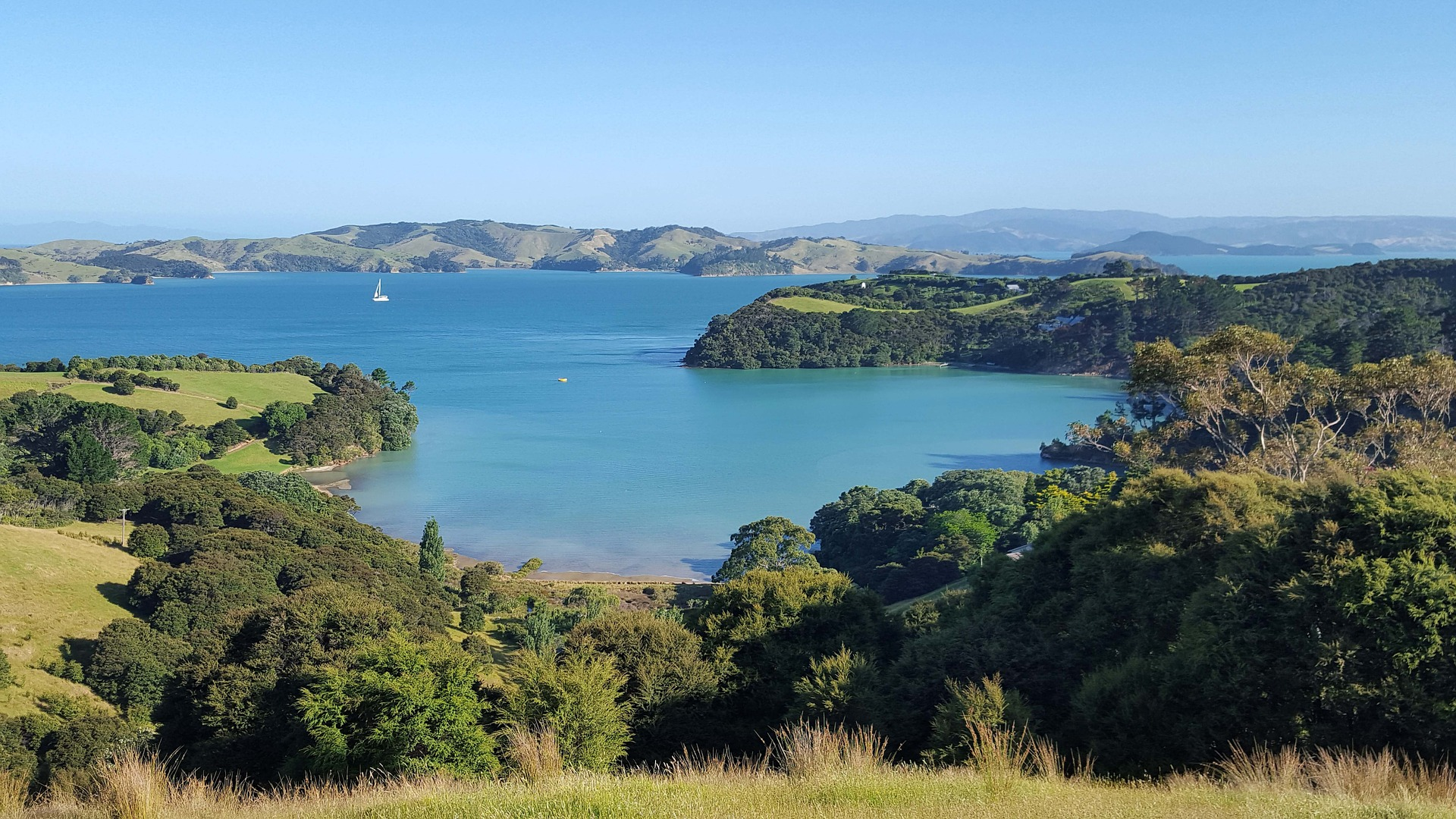 The Best Day Trips From Auckland.
